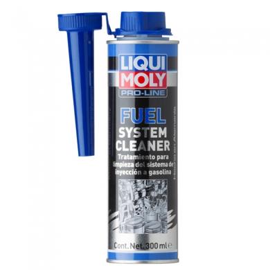 Fuel System Reiniger